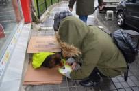 MOBİLYA MAĞAZASI - Üşüyen Köpek İçin Seferber Oldular