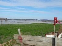 SULAMA KANALI - 300 Dönüm Ekili Arazisi Sular Altında Kaldı