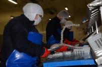 ET ÜRÜNLERİ - AB Desteği İle Fabrika Kurdu, Şimdi 5 Milyon Liralık İhracat Yapıyor