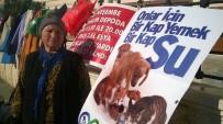 İKİNCİ EL EŞYA - Sokak Hayvanları İçin İkinci El Eşyaları Satıyor