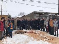 CELAL BAYAR - Vatandaşlar Mehmetçik İçin Kurban Kesti
