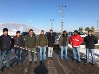 Ardahan Belediyesi Sokak Hayvanlarına Sahip Çıkıyor
