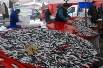 BALIK SEZONU - Balık Fiyatları Pahalı Ama İlgi Yüksek