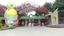 GAZİANTEP HAYVANAT BAHÇESİ - Gaziantep Hayvanat Bahçesi Ziyaretçi Sayısını Artırmayı Hedefliyor