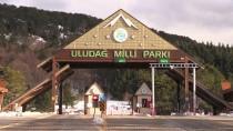 KAR MOTOSİKLETİ - GRAFİKLİ - ANADOLU'nun KAYAK ZİRVELERİ - Kış Turizminin Vazgeçilmezi Açıklaması Uludağ
