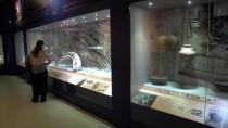 DARPHANE - Hatay Arkeoloji Müzesi'ne İlgi Artıyor