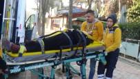 GİZLİ BUZLANMA - Bilecik'te Otomobil Ağaca Çarptı; 3 Kişi Yaralandı