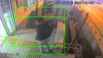 ENGELLİ GENÇ - Adana'da Darbedilen Engelli Genç Aleyhinde Soruşturma