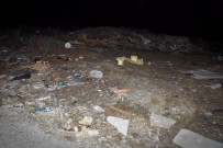 YAVRU KÖPEKLER - Kastamonu'da Yavru Köpekler, Tel Örgülerle Birbirine Bağlanarak Boğulmuş Halde Bulundu