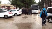 HASAN AYDıN - Adana'daki Terör Operasyonu