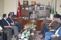 HAKKARİ VALİSİ - AK Parti İl Başkanı Tekin'den Ziyaretler