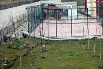 İSTİNAT DUVARI - Basketbol Sahası İkiye Bölündü
