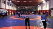 BAŞPEHLİVAN - Başpehlivan Kara, Genç Yetenekleri Türk Sporuna Kazandırıyor