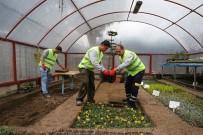 TAFLAN - Buca Yeşil Dokusunu Kendi Üretiyor