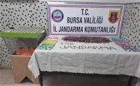 TÜRK LIRASı - Jandarmadan Kumar Oynanan Derneğe Operasyon