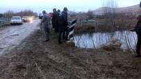 Kontrolden Çıkan Araç Nehre Uçtu Açıklaması 1 Ölü