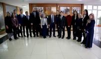 PELIN ÇIFT - Sivas Kent Konseyi 200 Kişilik Çalışma Grubu Oluşturdu.