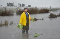 HÜSEYIN ÖZER - Tarsus'ta Seralar Sular Altında Kaldı