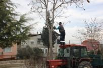 GÖKHAN KARAÇOBAN - Alaşehir Belediyesinden İhtiyaç Sahibi Ailelere Yardım Eli