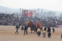 Burhaniye'de 'Zeytin Ve Zeytinyağı Hasat Festivali'