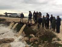 AŞIRI YAĞIŞ - Milletvekili Taşkın, Yağıştan Zarar Gören Bölgelerde İncelemelerde Bulundu