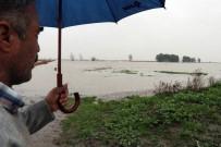 DOĞU AKDENİZ - Tarlalar Göl, Seralar Havuz Oldu