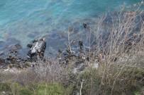 DENİZ POLİSİ - Bariyerleri Aşan Otomobil Denize Uçtu Açıklaması 1 Ölü