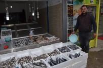 BALIK AVI - Fatsa'da Balık Fiyatları Günlük Değişiyor