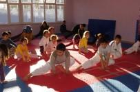 Kaman Gençlik Merkezi Taekwondo Kursunda 34 Genç Eğitim Görüyor