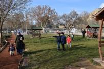 ORDUZU - Kış Ortasında Piknik Keyfi