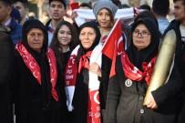 Osmaniye'de Kurtuluş Coşkusu