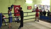 BOKS - Adana'da Boks İl Seçmelerine 70 Sporcu Katıldı