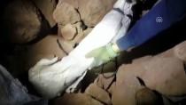 MUTFAK TÜPÜ - Ağrı Dağı'nda Terör Operasyonu