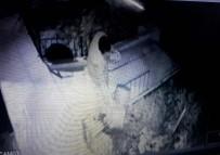 Çaldığı Çöp Kovasının İçindeki Çöpleri, İş Yerinin Bahçesine Döktü