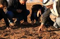 KIRAÇ - Çiftçiyi Kuraklık Endişesi Sardı