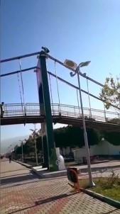 Köprüde tehlikeli oyun
