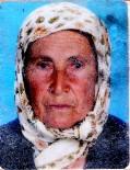Zeytin Toplarken Sırra Kadem Basan Annesini 70 Gündür Arıyor