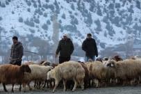 KESİM MERKEZİ - Akşarlılar Kapalı Hayvan Pazarı İstedi