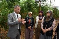 DEMRE - Antalya'da İyi Tarım Uygulama Projesine Destek