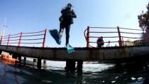 İSMAIL YıLDıRıM - Batırılan Emektar Vapur Su Altı Yaşamını Canlandırdı