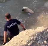 İTFAİYE MÜDÜRÜ - Mahsur Kalan Köpeği İtfaiye Kurtardı