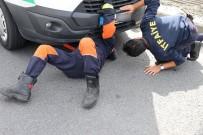 OKMEYDANı - (Özel) TEM Otoyolu'nda 'Yabani Köpek' Operasyonu