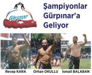 YAĞLI GÜREŞ - Şampiyon Başpehlivanlar Gürpınar'a Geliyor