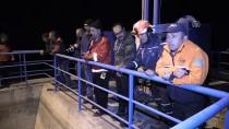 HİDROELEKTRİK - Bolu'da Geyik Kurtarma Operasyonu