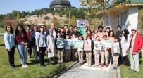SINIF ÖĞRETMENİ - DPÜ TEMA Topluluğu'ndan Fidan Dikimi Ve Çevre Temizliği Etkinliği