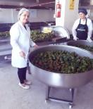 GASTRONOMİ FESTİVALİ - Gaziantep'in Geleceği Gastronomide