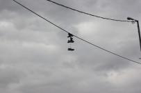 TEMİZLİK GÖREVLİSİ - (Özel) Tellerde Esrarengiz Ayakkabılar