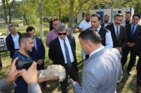 Vali Çınar, Çaycuma'da Tarım Ve Hayvancılık Tesislerini İnceledi
