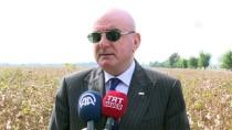 AZERBAYCAN - ATİB, Ağdam'da Sanayi Mahallesi Kuracak
