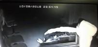 Kiralık Araçla Hırsızlık Yaptılar